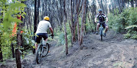 1-Mountain biking riders on trails in Rangihoua